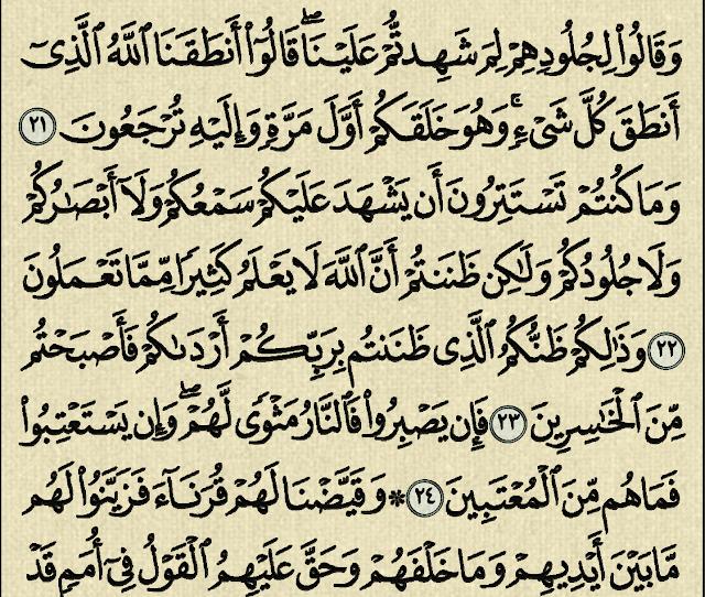 شرح وتفسير سورة فصلت surah fussilat (من الآية 16 إلى الآية 29)