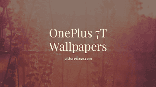 Best Wallpapers For OnePlus 7T