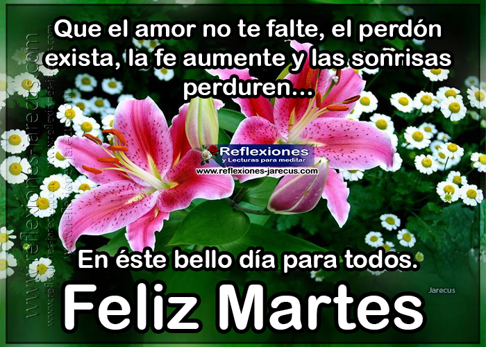 Feliz martes, que el amor no te falte, el perdón exista, la fe aumente y las sonrisas perduren.