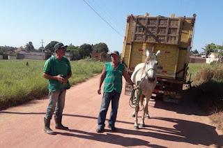 http://vnoticia.com.br/noticia/4101-departamento-de-correicao-de-sfi-atua-ha-24-anos-apreendendo-animais-soltos-nas-ruas
