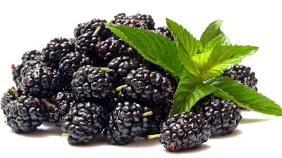 buah blackberry wallpaper