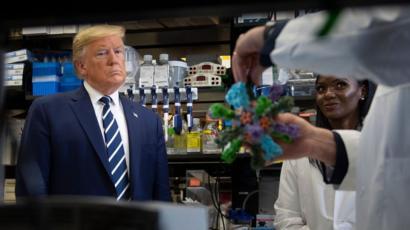 أمريكا، فيروس كورونا، ترامب