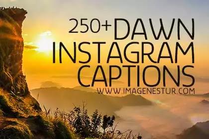 Dawn-Captions-for-Instagram