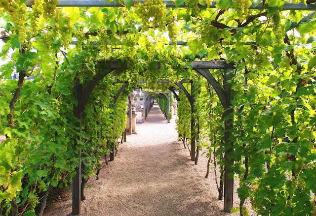 slottsträdgård i Frankrike