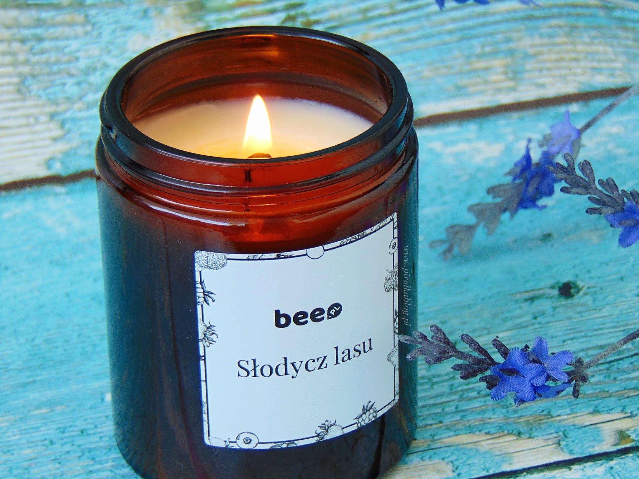 Słodki zapach owoców leśnych (poziomek, jagód, malin i jeżyn)