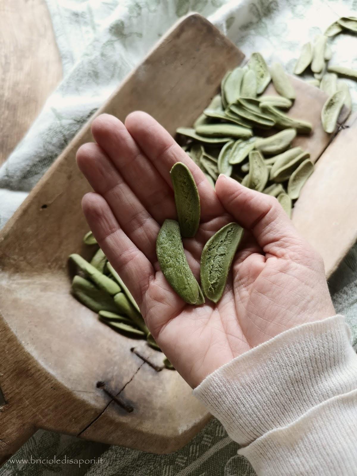 pasta foglia d'ulivo