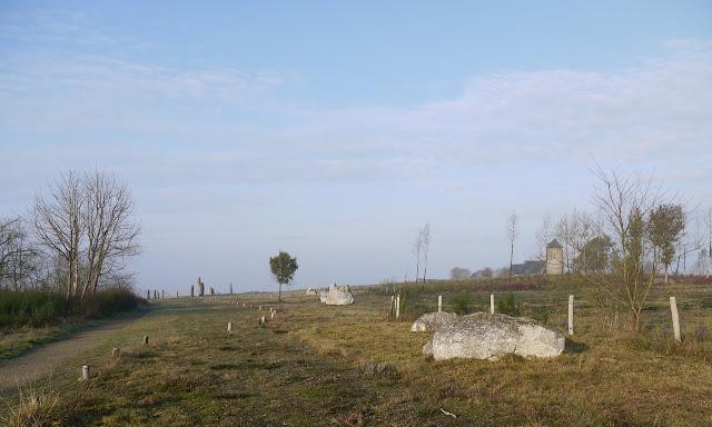 Les alignements du moulin, dans les Landes de Cojoux,  se composent de plusieurs files