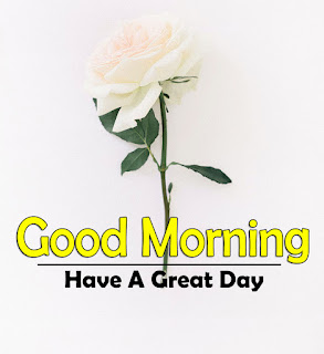 New Good Morning 4k Full HD Images Download For Daily%2B73
