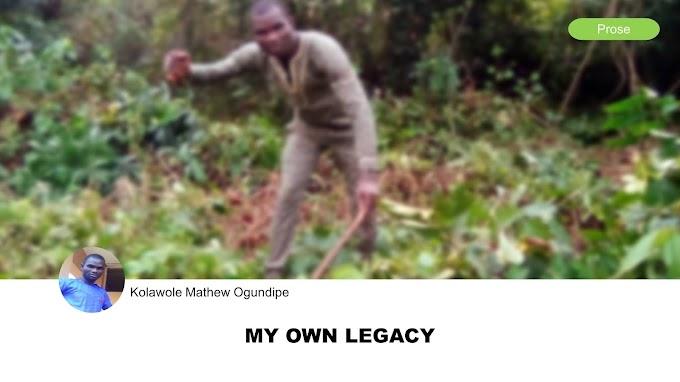 My Own Legacy by Kolawole Mathew Ogundipe