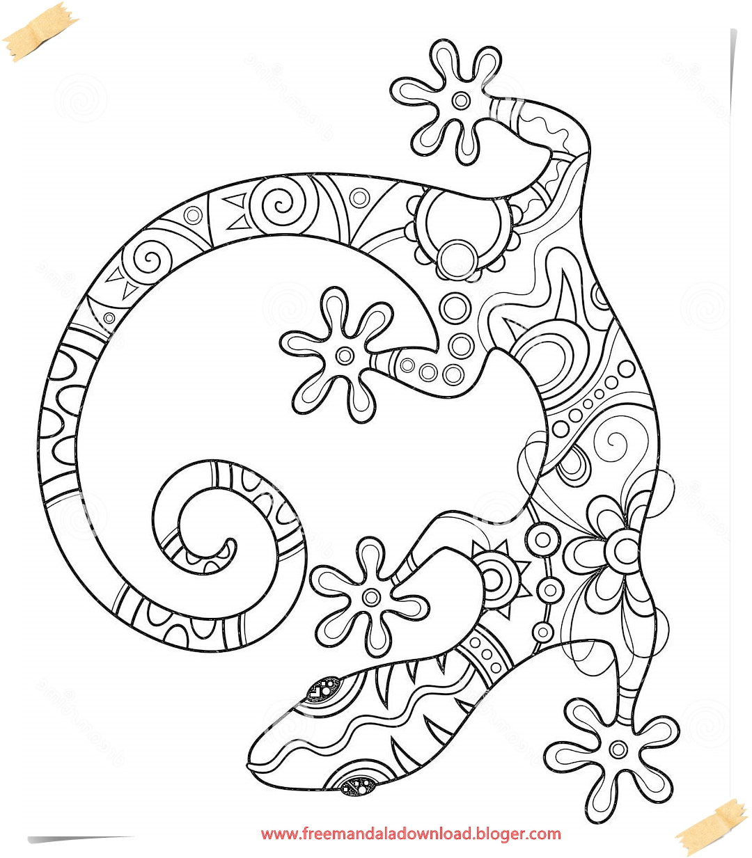 Lizard Mandala Malvorlagen-Lizard Mandala coloring page