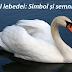 Cântecul lebedei: Legendă, simbol și semnificație