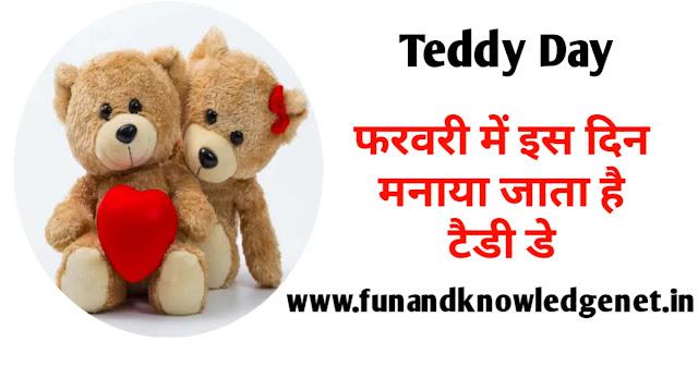 Teddy Day Kab Manaya Jata Hai - टैडी डे किस दिन मनाया जाता है