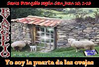 Resultado de imagen para EN aquel tiempo, dijo Jesús: «En verdad, en verdad os digo: el que no entra por la puerta en el aprisco de las ovejas,