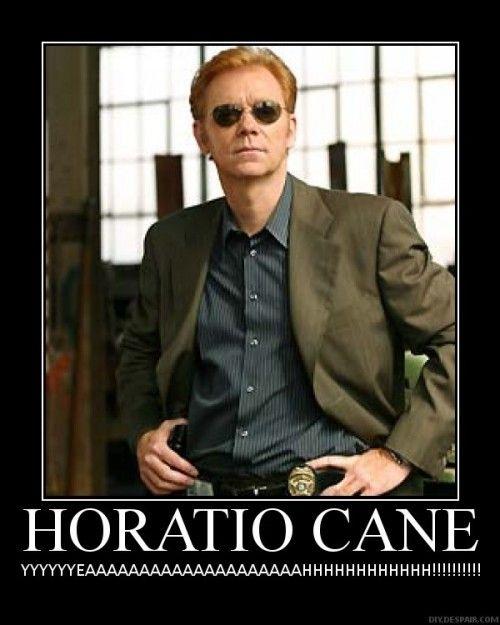 18 Awesome David Caruso Memes | Screen Junkies - David ...