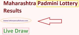 Maharashtra Padmini Lottery Results 03 September 2019 Live