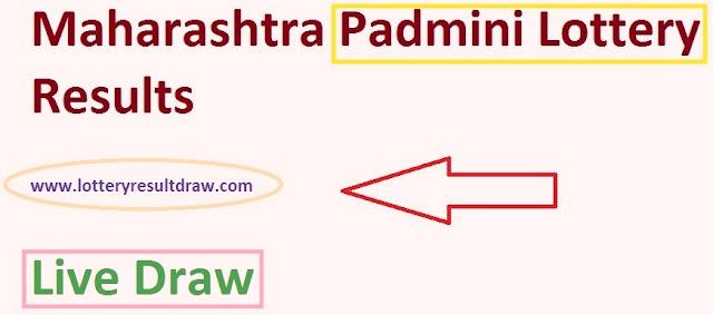 Maharashtra Padmini Lottery Results 13 August 2019 Live Draw Winning