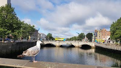 like amsterdam