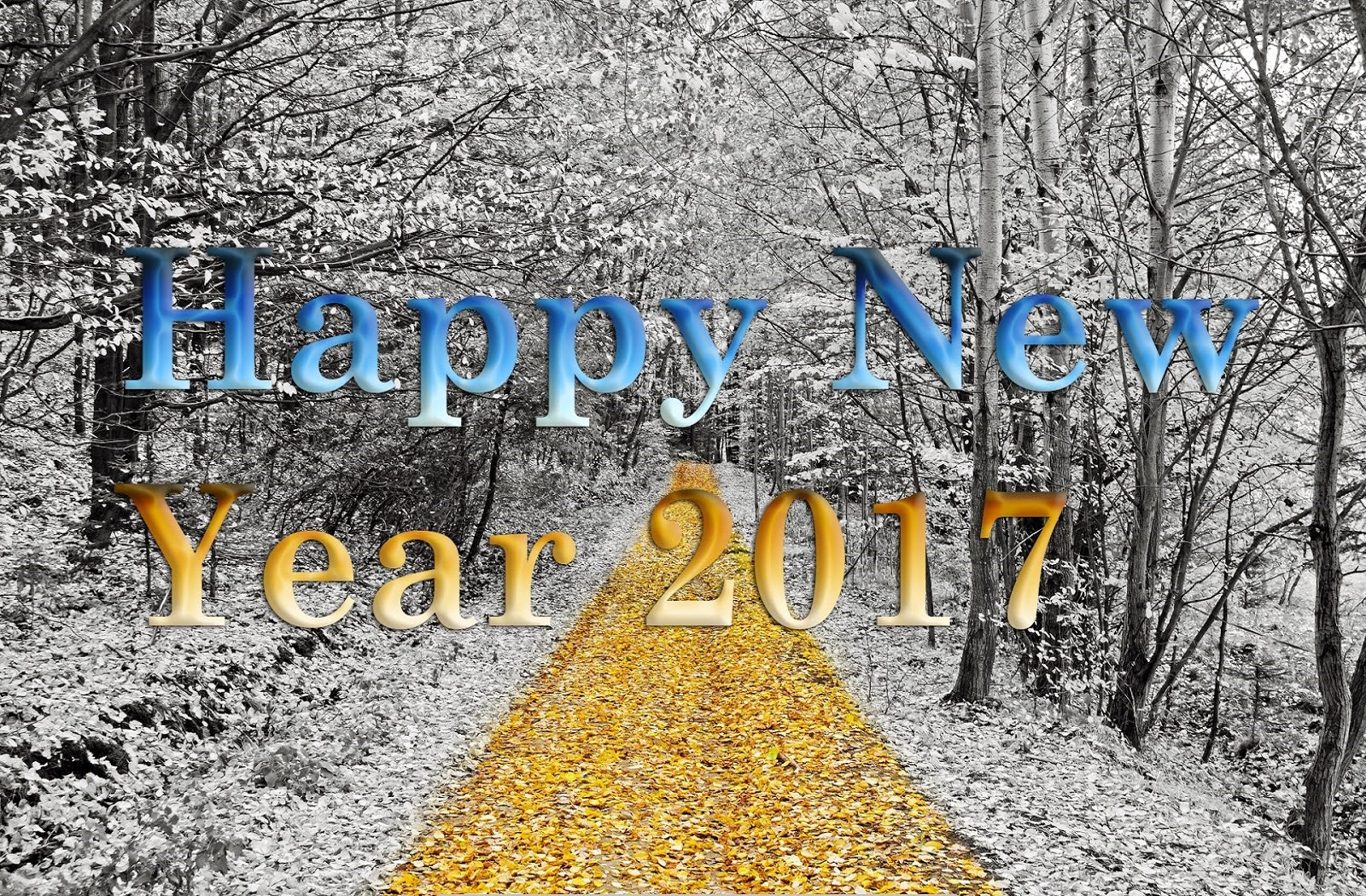 New Year 2017 Hd Wallpaper: ReWallpaper