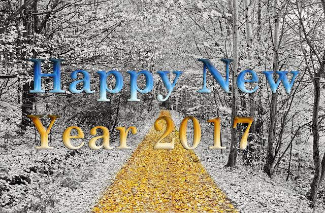 Happy New Year 2017 Wonderful HD Desktop Wallpaper