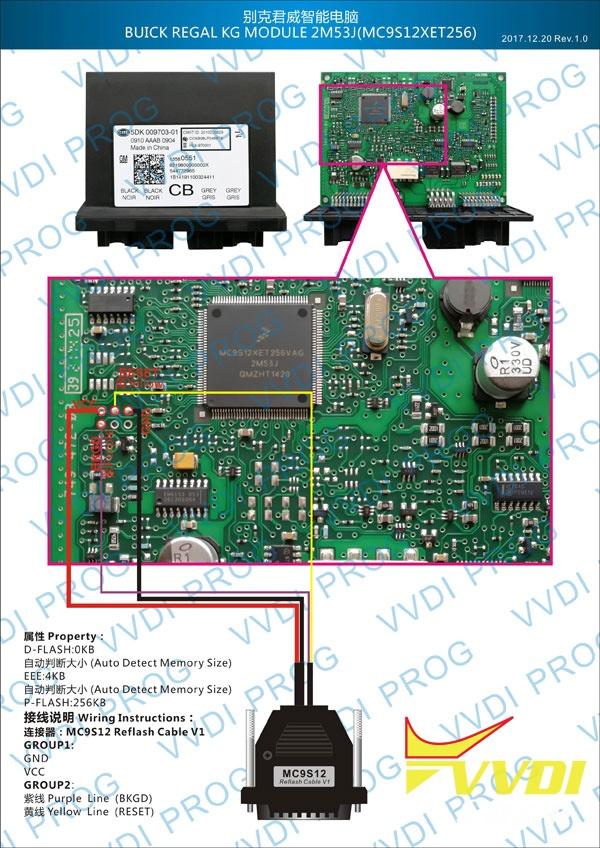 Buick Regal KG Module 2M53J (MC9S12XET256)