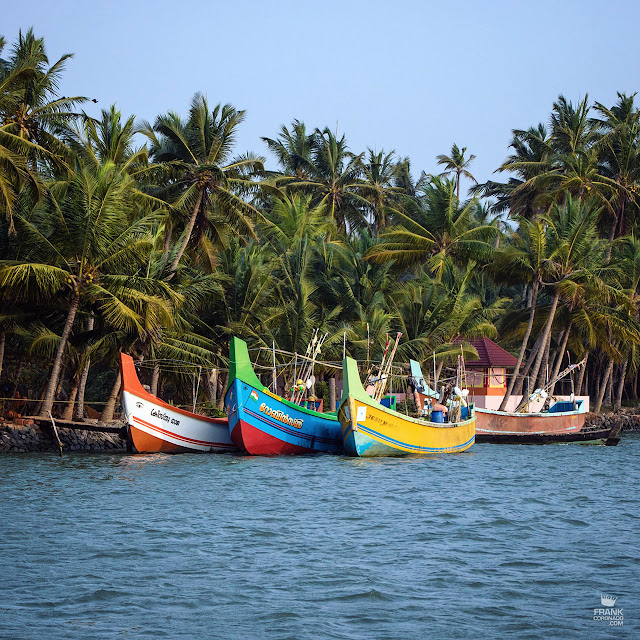 botes de colores en Kerala india