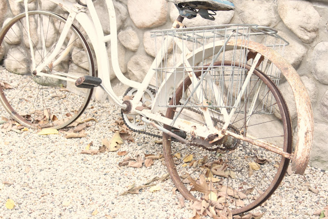 Rusty vintage white bicycle in pea gravel courtyard by Hello Lovely Studio