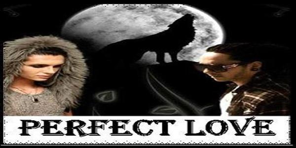 Perfect Love. Serie
