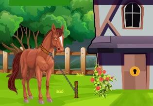 Pony Horse Escape