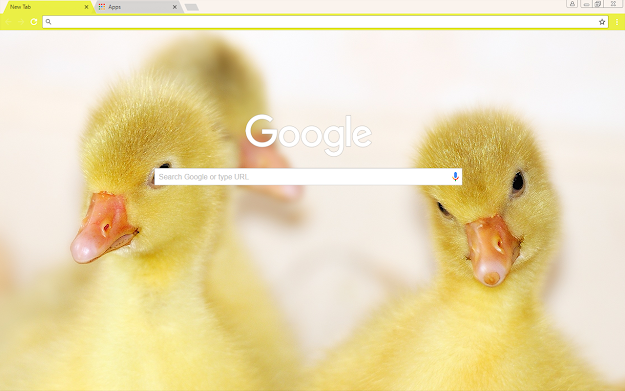 Baby Ducks Google Theme