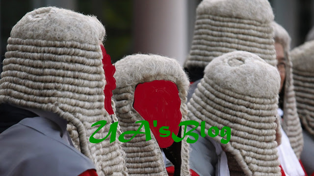"""DNA: Don't Address Judges As """"My Lord"""", Rajasthan High Court Tells Lawyers"""