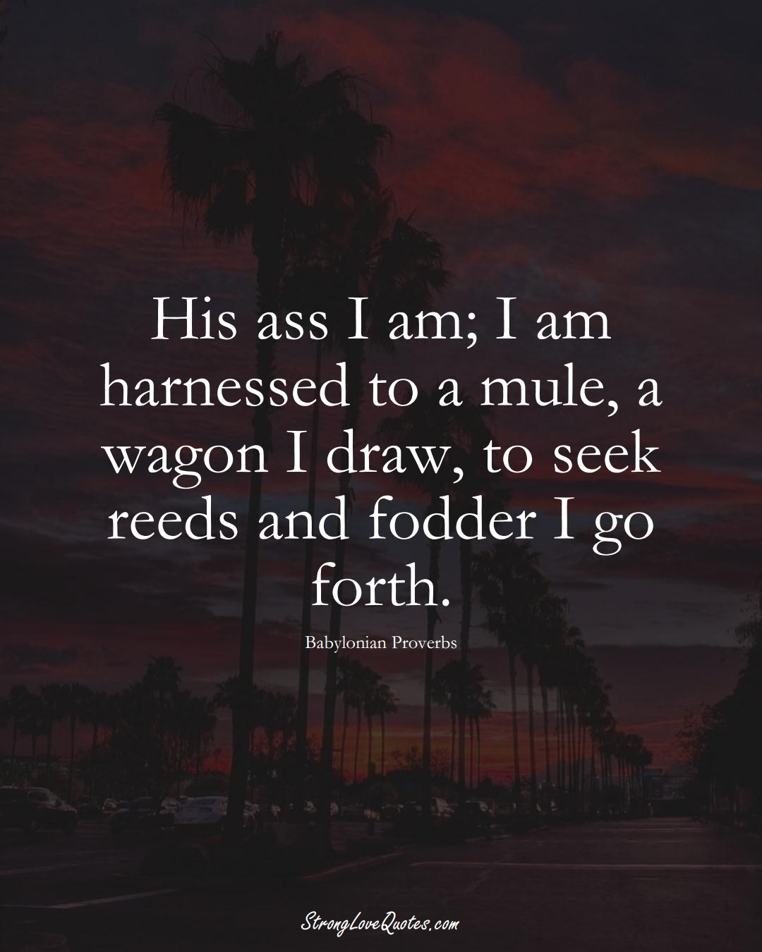 His ass I am; I am harnessed to a mule, a wagon I draw, to seek reeds and fodder I go forth. (Babylonian Sayings);  #aVarietyofCulturesSayings