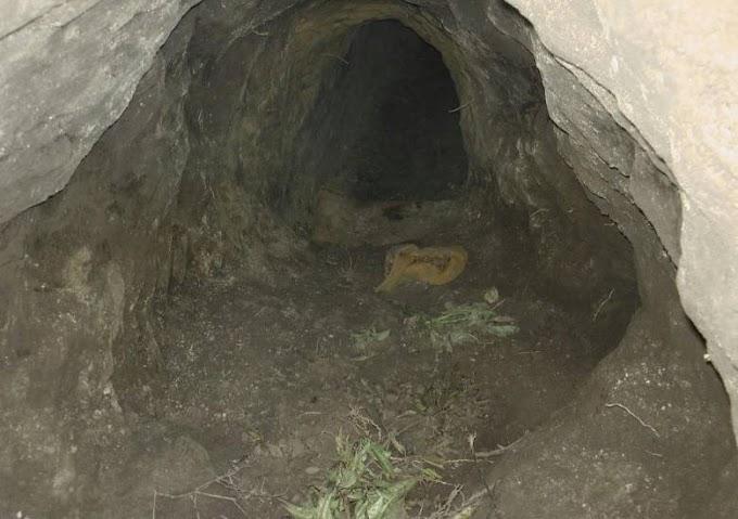 A szerb-magyar határ alatt átvezető alagutakat számoltak föl a rendőrök