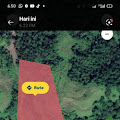 Penyerobotan Tanah oleh PT MSM, Pemilik Lahan Lapor Ke Mabes POLRI