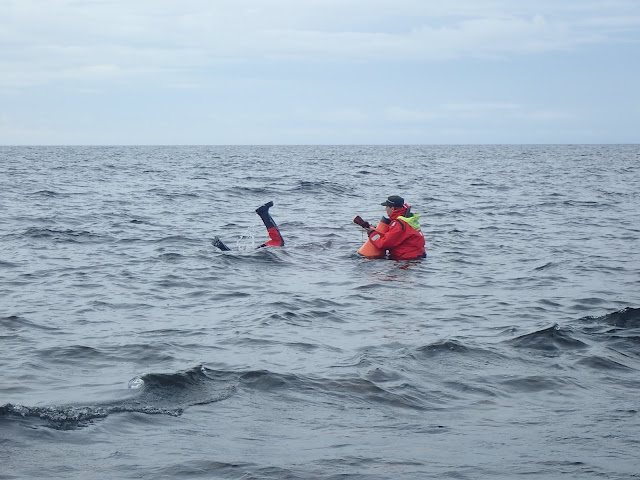 Kaksi kartoittajaa. Toinen pitelee vesikiikareita, toisesta näkyy vain jalat... merenpinnan yläpuolella.