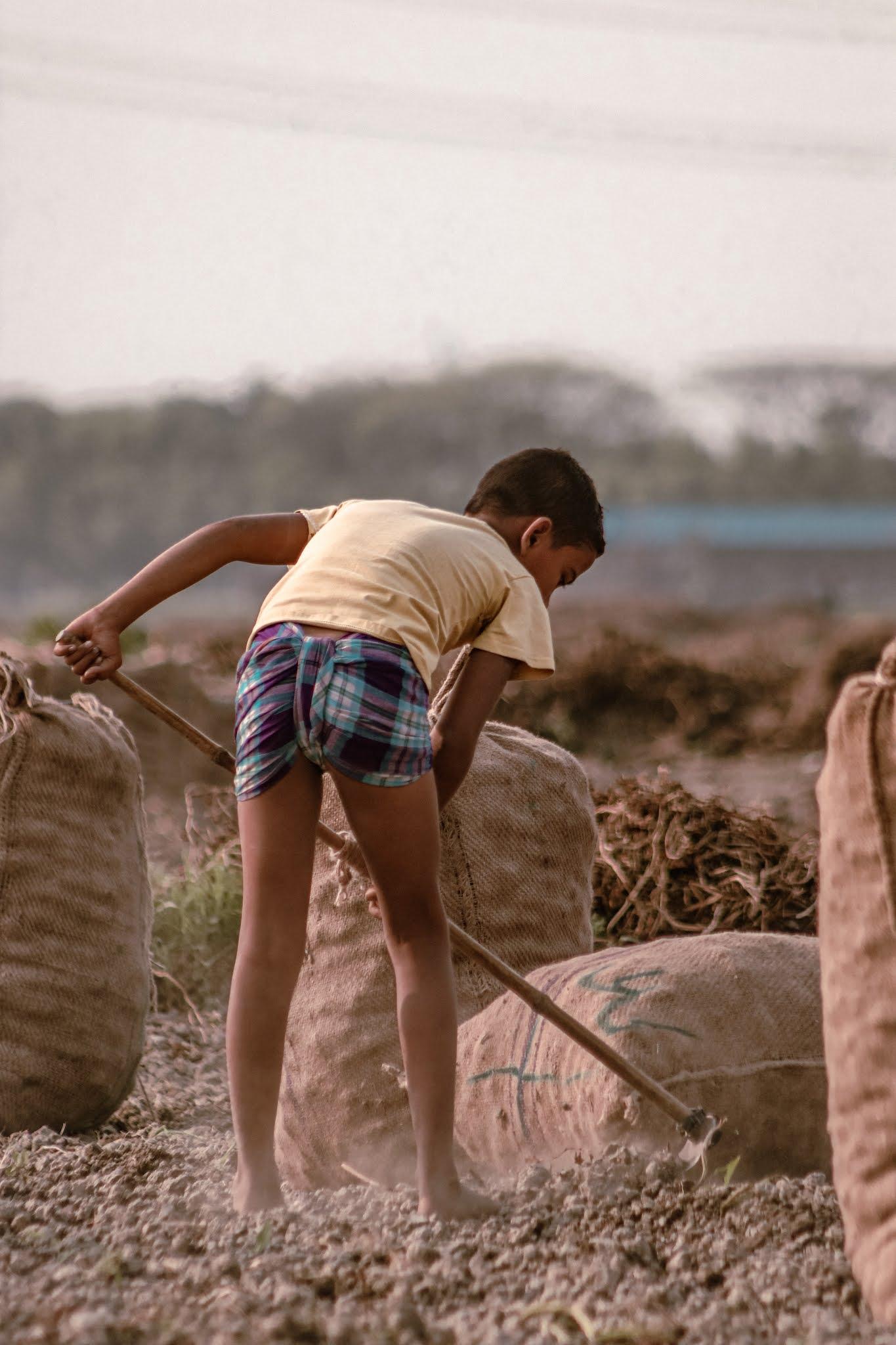 Check essay on child Labour in Hindi | essay on child Labour
