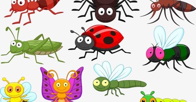 تفسير حلم رؤية الحشرات في المنام لابن سيرين