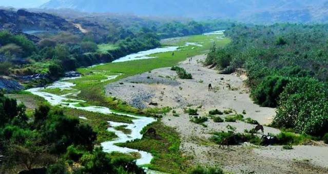 وادي حلي