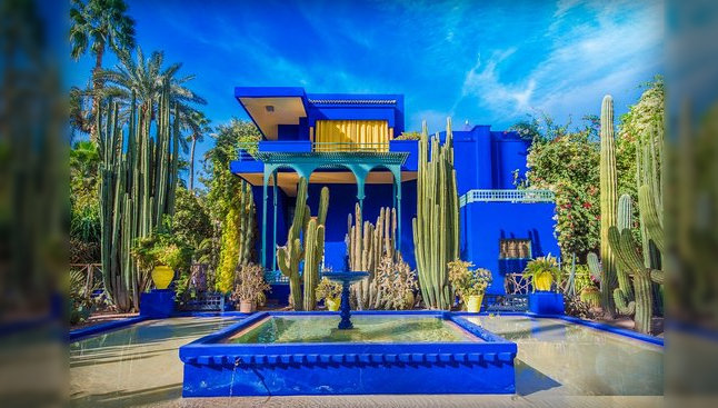 Get surrounded by beautiful and rare plants and flowers at Jardin Majorelle