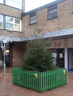 Christmas tree in Cheadle Hulme