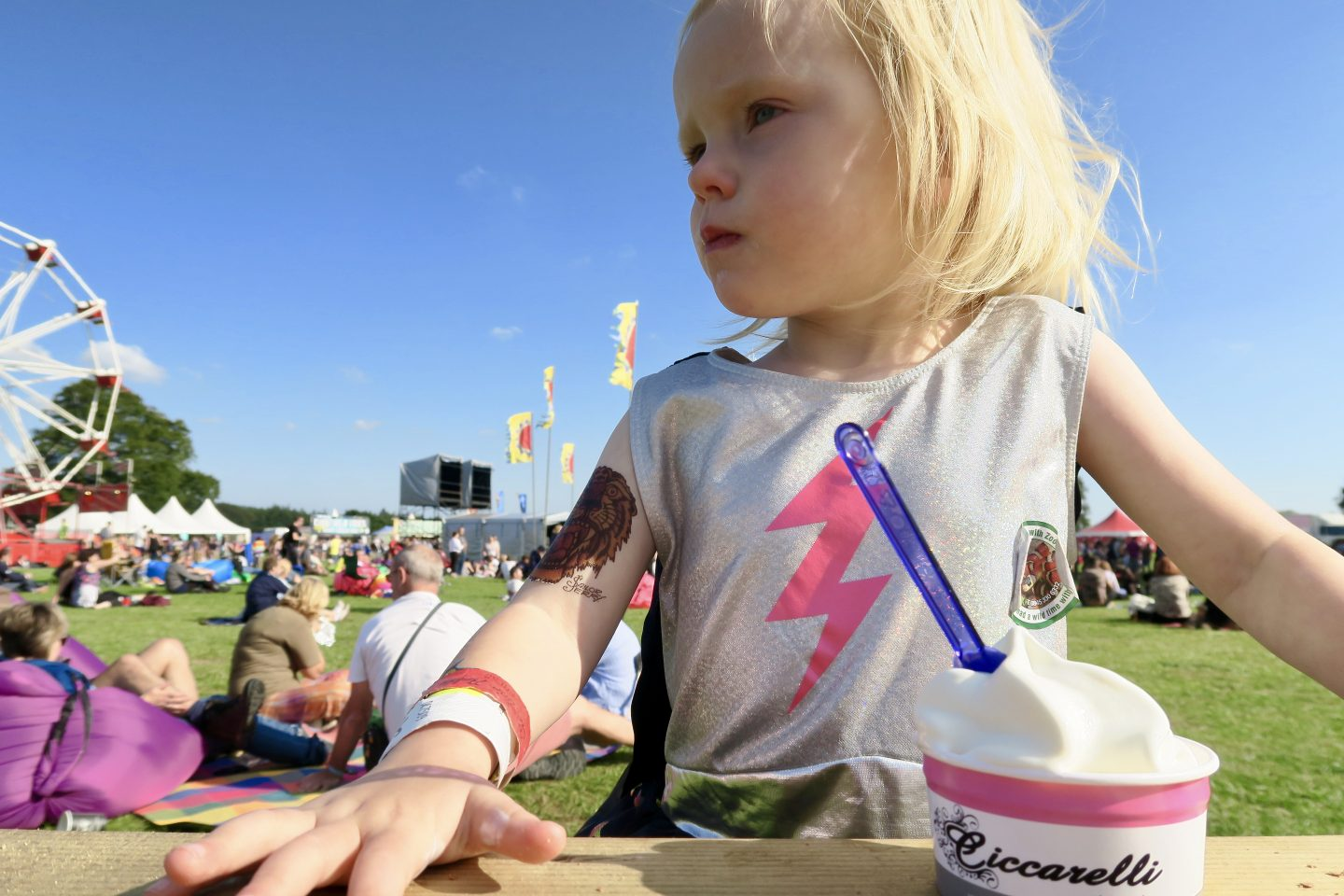 10 of the best family festivals within a 3 hour drive of Newcastle  - Electric Fields Festival