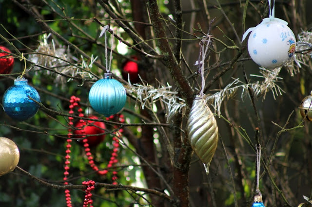 Millenium Forest Kilkenny Baubles on Tree