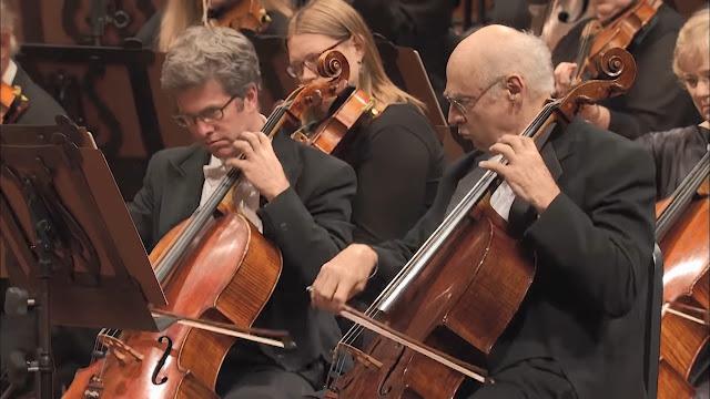 Mengenal Alat Musik dalam Orkestra versi Benjamin Britten - Blog Fisella - Cello