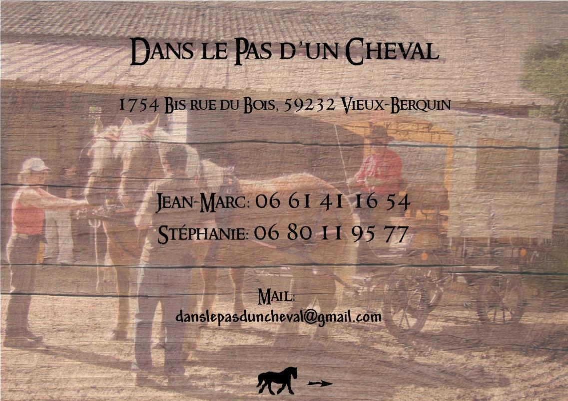 http://danslepasduncheval.blogspot.fr/