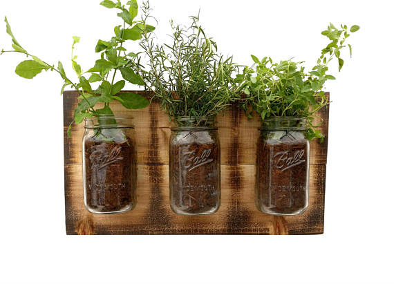 11 Tiny Herb Gardens You Ll Love For Your Small Space Let S Do