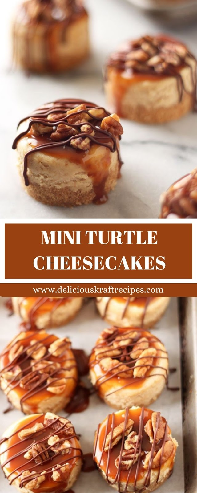 MINI TURTLE CHEESECAKES