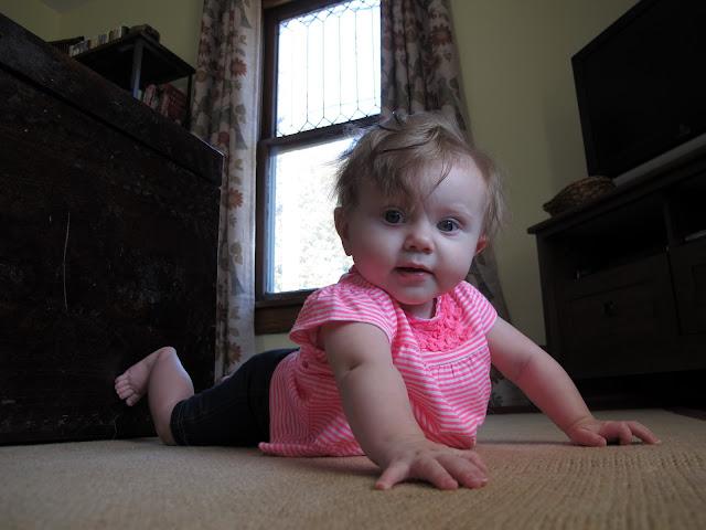 Crawling Stella