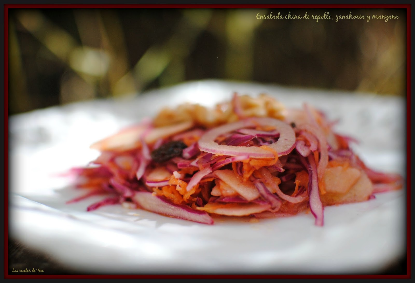 ensalada china de repollo zanahoria y manzana 05