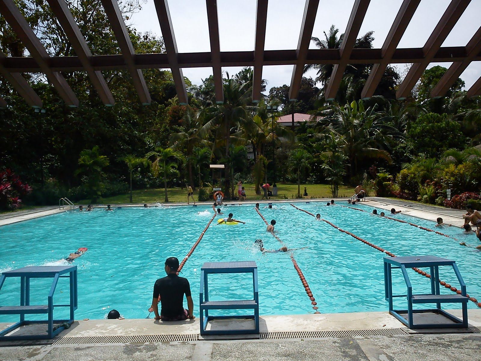 Unique Olympic Size Swimming Pool In Quezon City