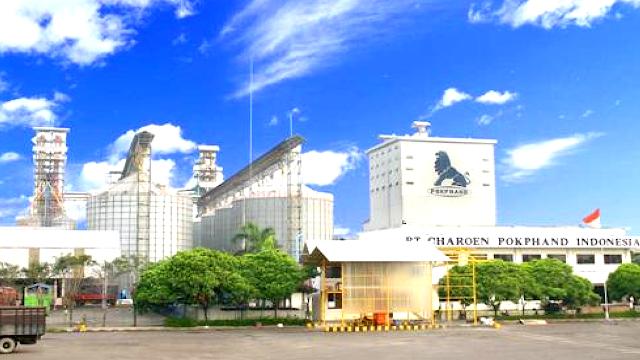 Lowongan Kerja PT Charoen Pokphand Indonesia Tbk Penempatan Lebak
