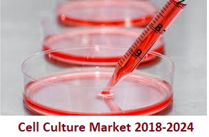 Cell Culture Market 2024 by Meticulous Research